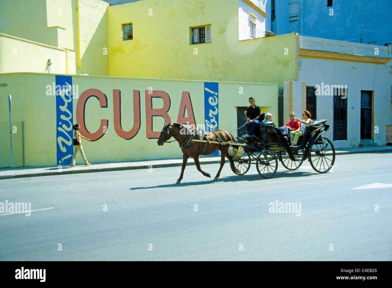Cuban man with Horse-drawn carriage, siht seeing for  tourists, Havana, Cuba, Carribean - Stock Image