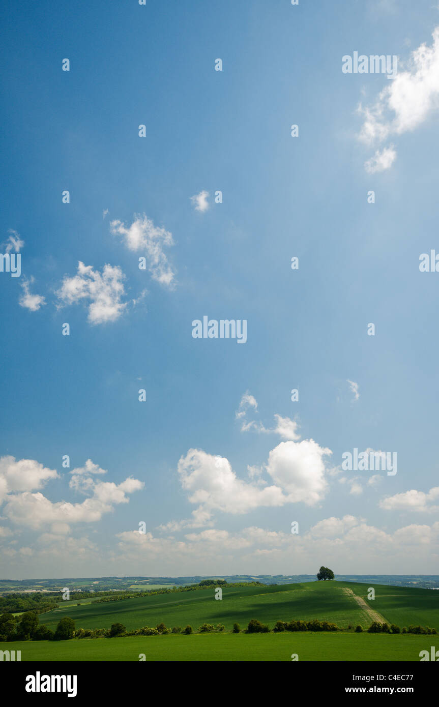Summer day view from wittenham clumps - Stock Image