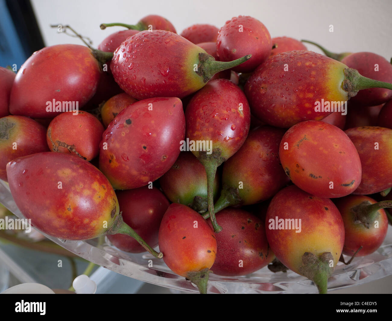 A bowl of num-num fruit, otherwise known as Carissa indigenous to Africa and Asia - Stock Image