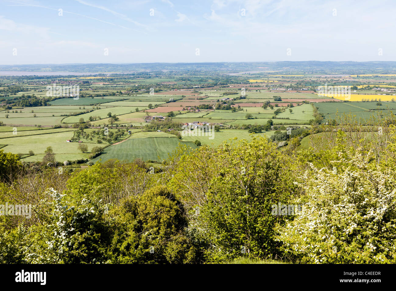 The view across the Severn Vale to the Forest of Dean from the Cotswold Way on Haresfield Hill, Gloucestershire, - Stock Image