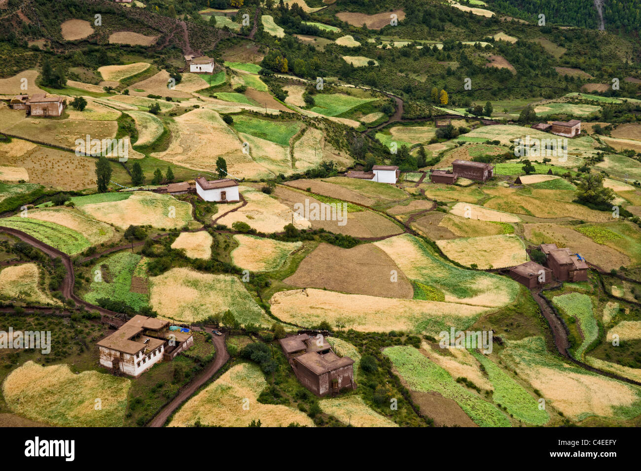 Countryside at harvest time north of Yanjing, Tibet - Stock Image
