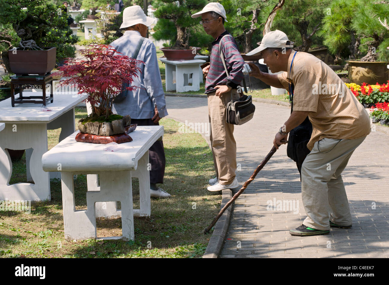People admiring the variety of Penjing, miniature landscapes on display in a  Park in Nanjing, China - Stock Image