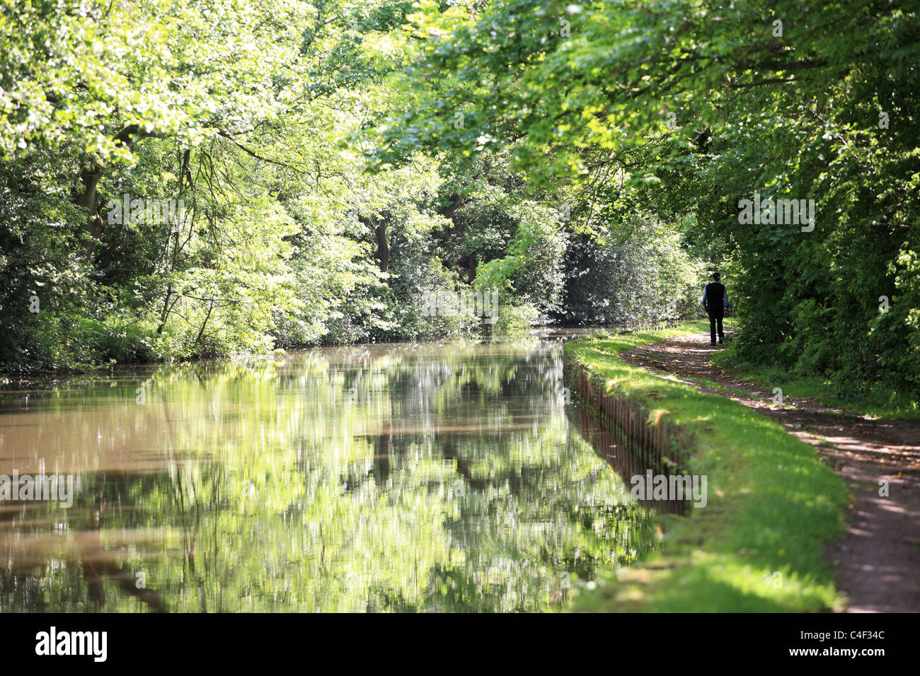 A man walking into the distance along the towpath of the Leeds and Liverpool canal, near Skipton, North Yorkshire, - Stock Image