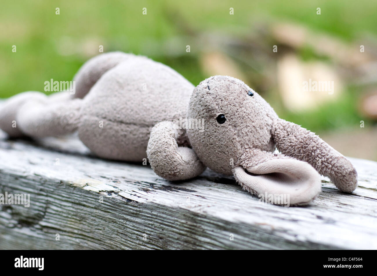 Child's Toy Rabbit, Attachment Object, as part of childhood, and transitioning away from parents. - Stock Image