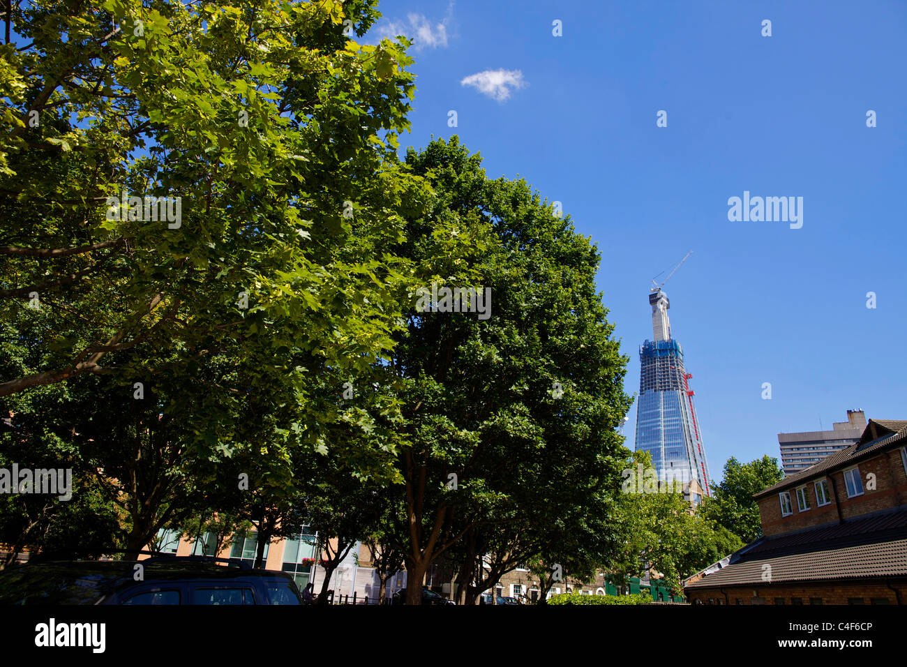 The Shard skyscraper under construction looming over the trees in Southwark - Stock Image