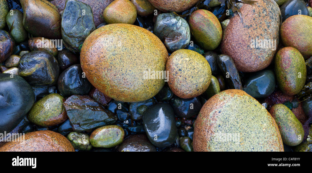 Colourful pebbles on the seashore at Priest's Cove near Land's End, St Just, Cornwall, England. Autumn (October) - Stock Image