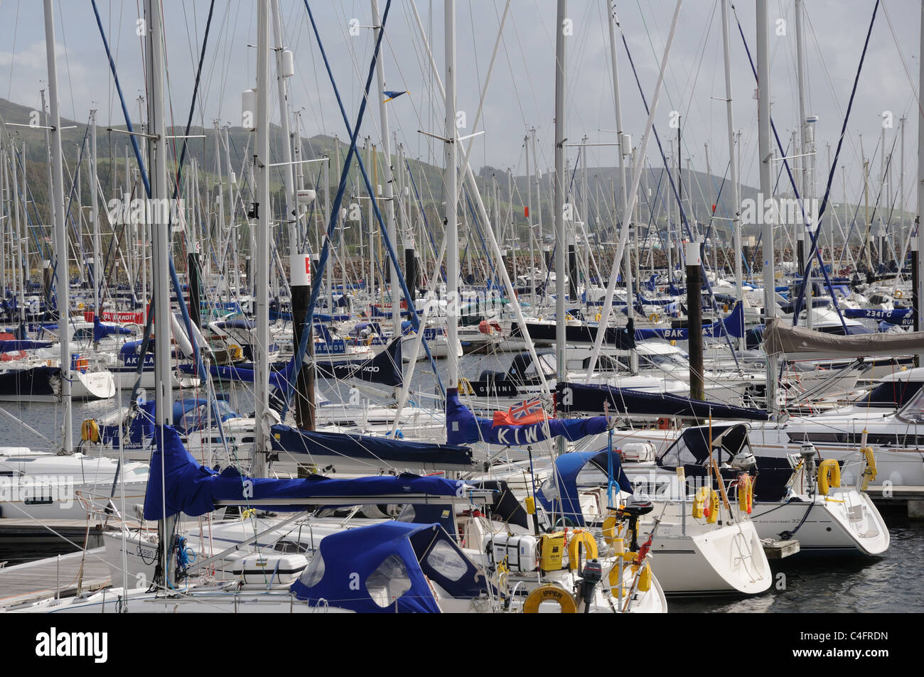 Yachts moored in Largs Yacht Haven, Ayrshire and Arran, Scotland Stock Photo