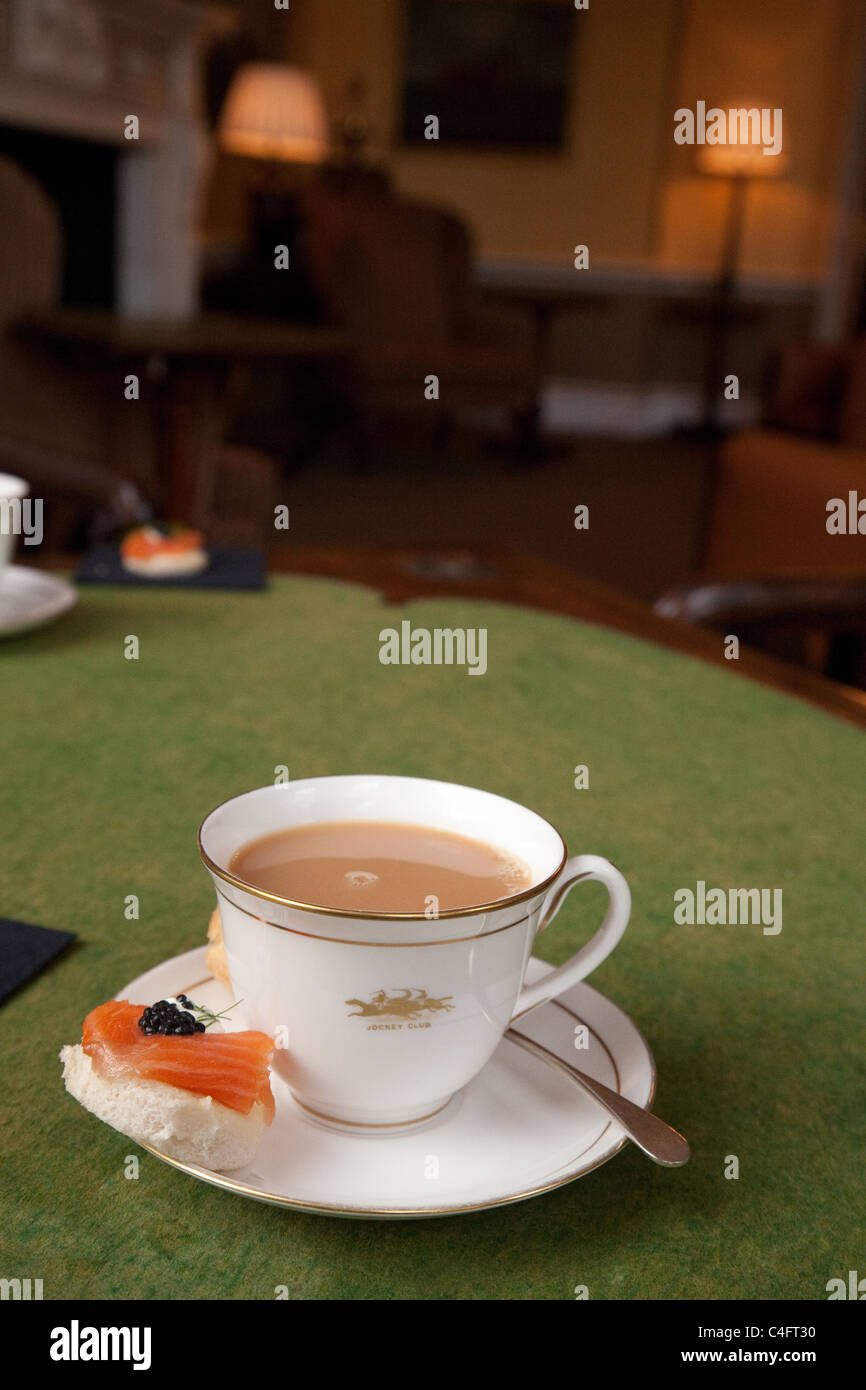 A china cup of tea and smoked salmon canape, afternoon tea, The Jockey Club Newmarket Suffolk UK - Stock Image
