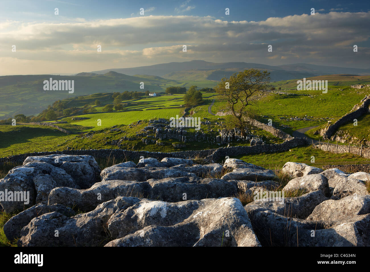Winskill Stones, Ribblesdale, Yorkshire Dales National Park, England, UK - Stock Image