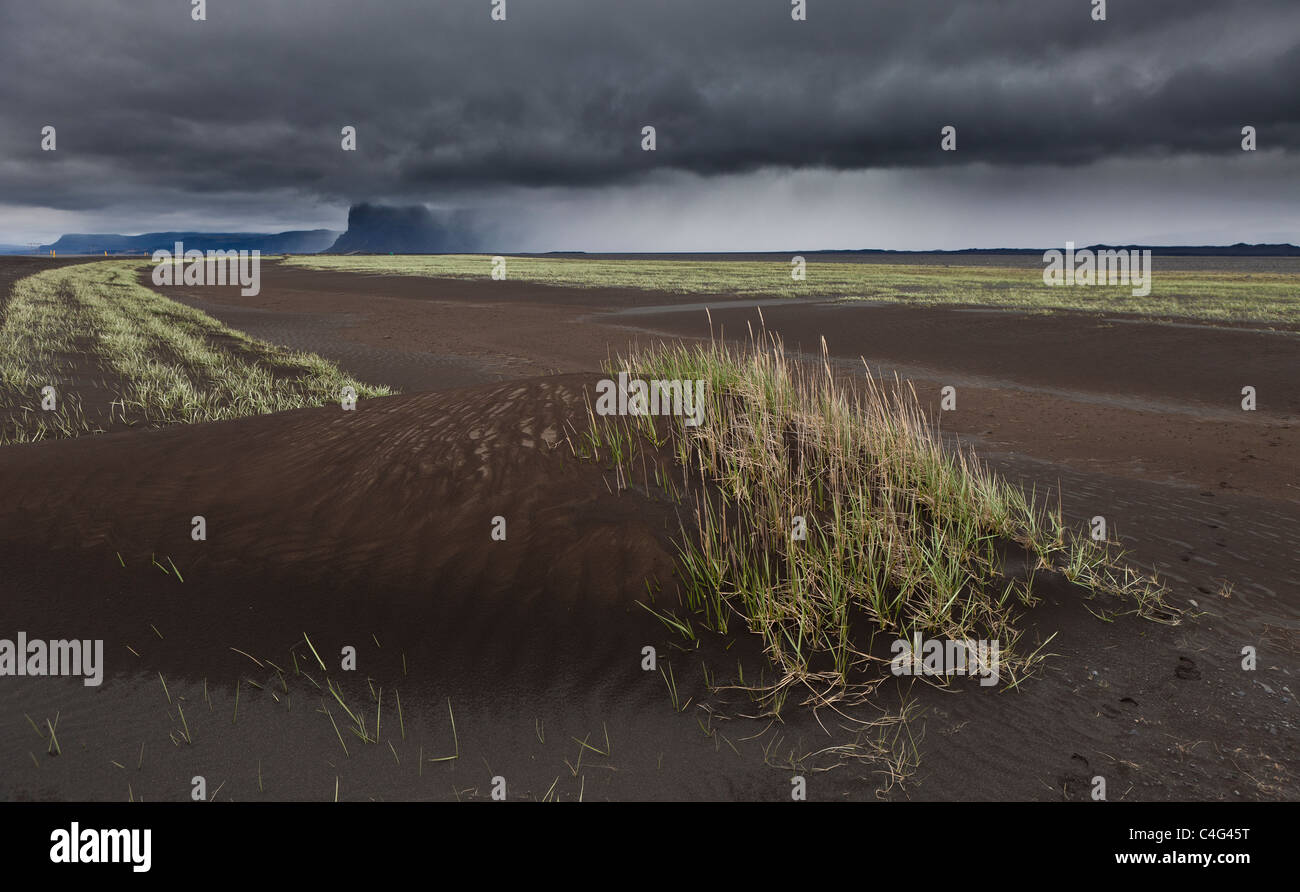 Skeidararsandur outwash plains covered with new ash from Grimsvotn volcanic eruption, Iceland - Stock Image