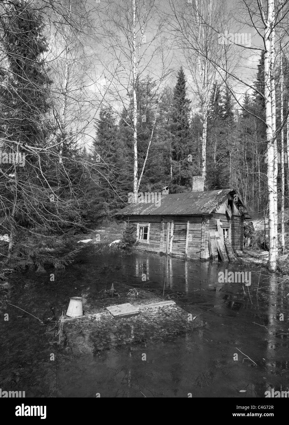 Old decaying wooden sauna made of logs flooded at Springtime , Finland - Stock Image
