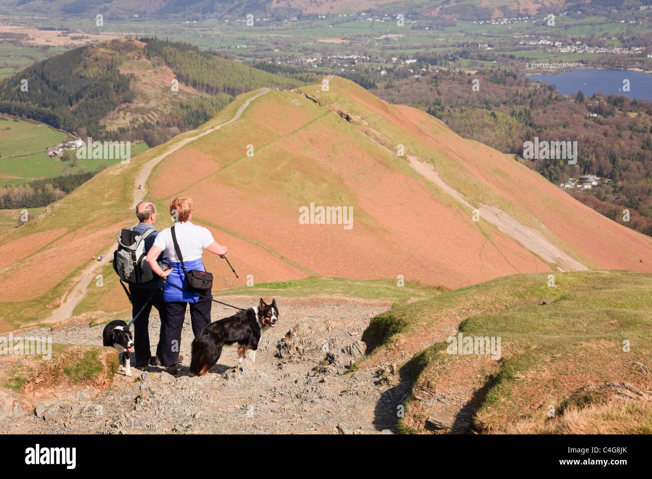 People with dogs hiking on path up Catbells looking at view to Derwentwater in Borrowdale in Lake District. Keswick - Stock Image