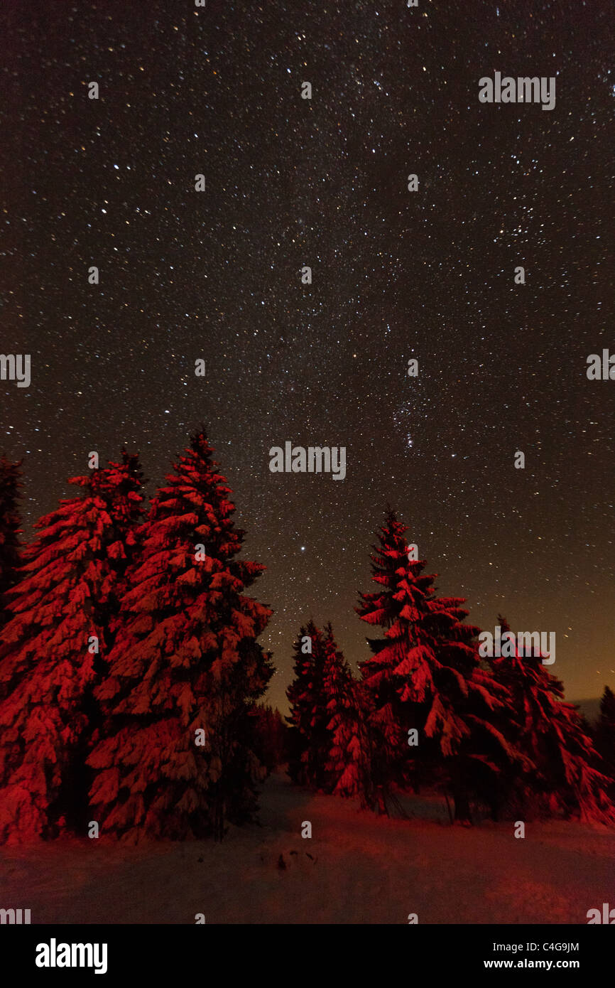 Star covered winter sky, Hohen Meissner National Park, North Hessen, Germany - Stock Image