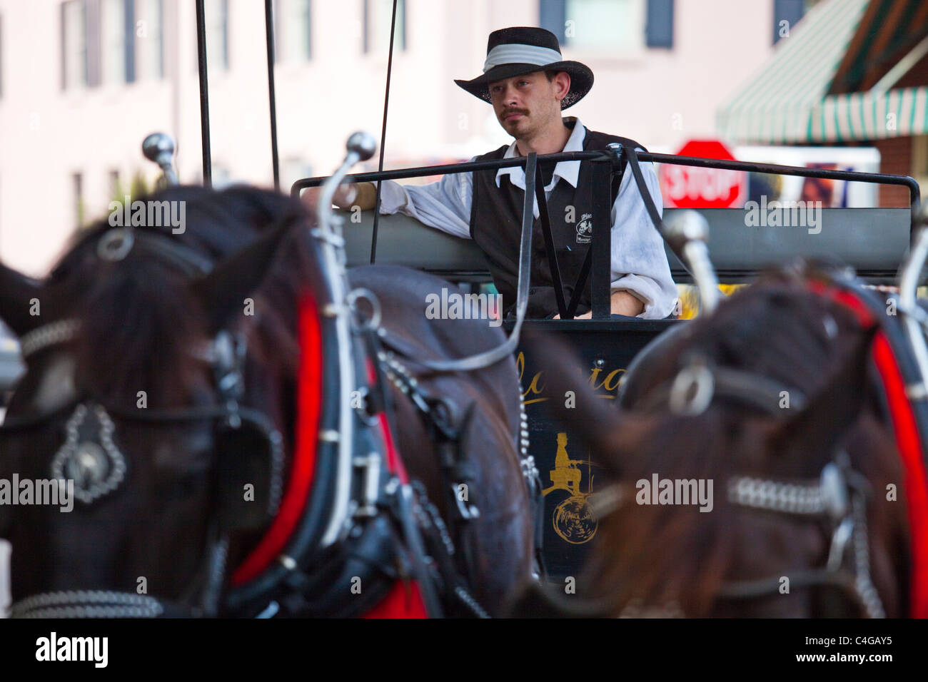 Horse Carriage in Savannah Georgia - Stock Image