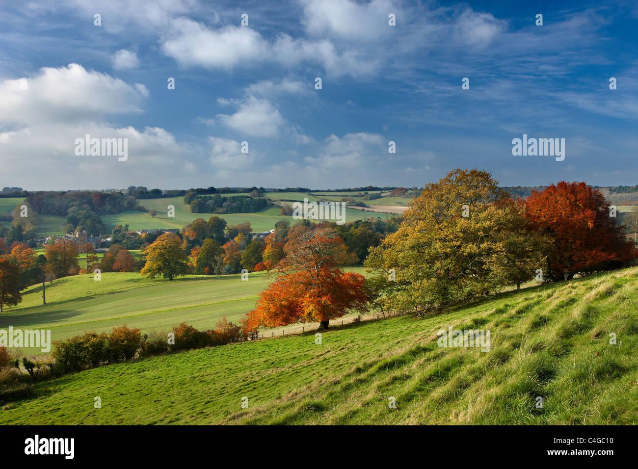 Minterne Magna, Dorset, England - Stock Image