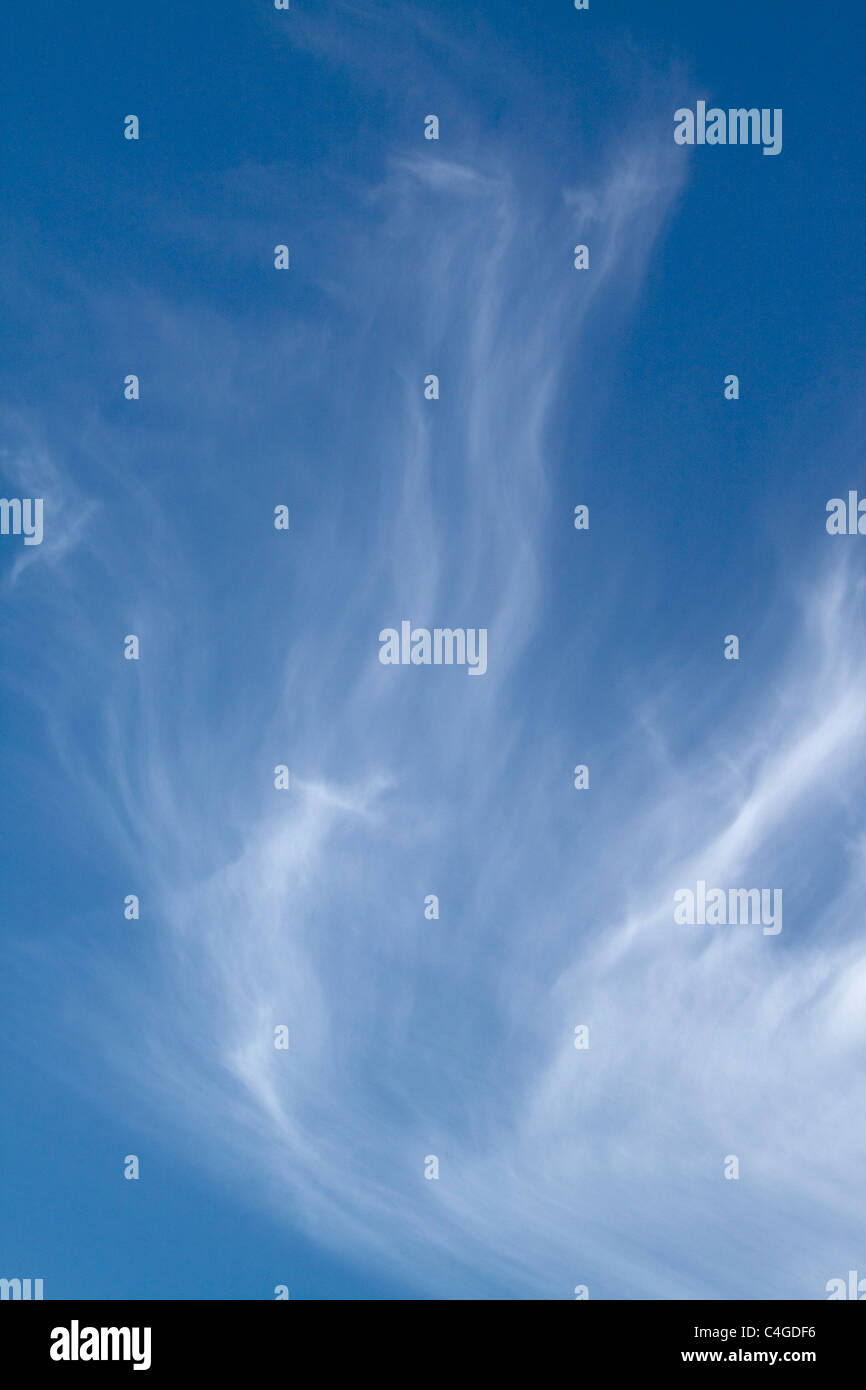 Cirrus clouds looking like an angel wing on a blue sky - Stock Image