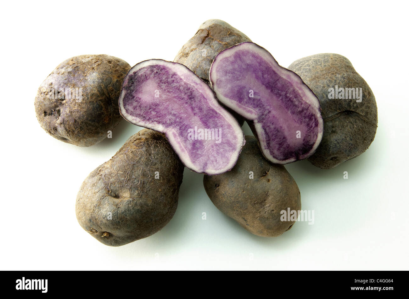 Potato (Solanum tuberosum Blue Congo). Potatoes, studio picture against a white background. - Stock Image