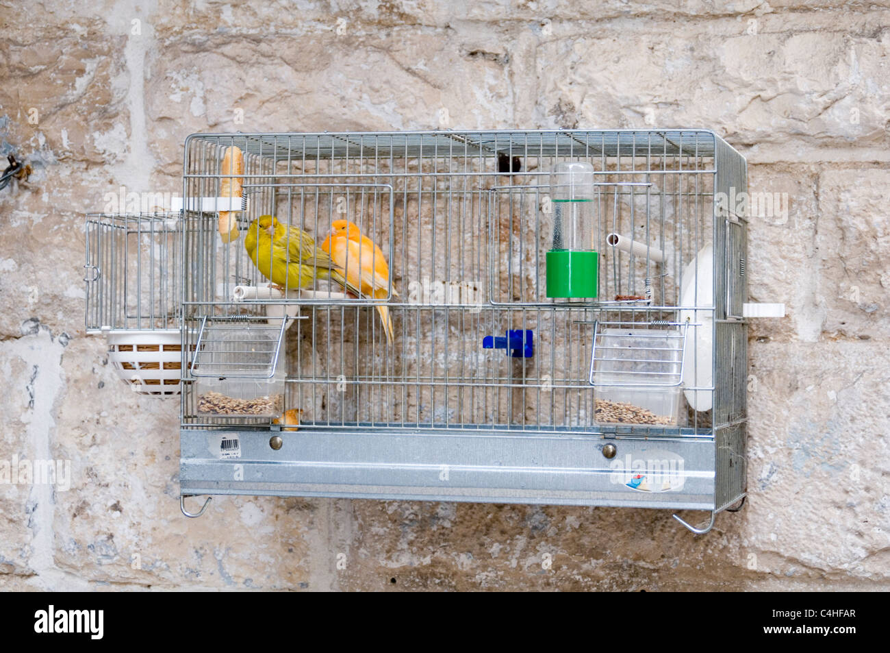 canary canneries cage caged cages bird birds pet birdcage cages birdcages feeder feeders captive captivity small - Stock Image