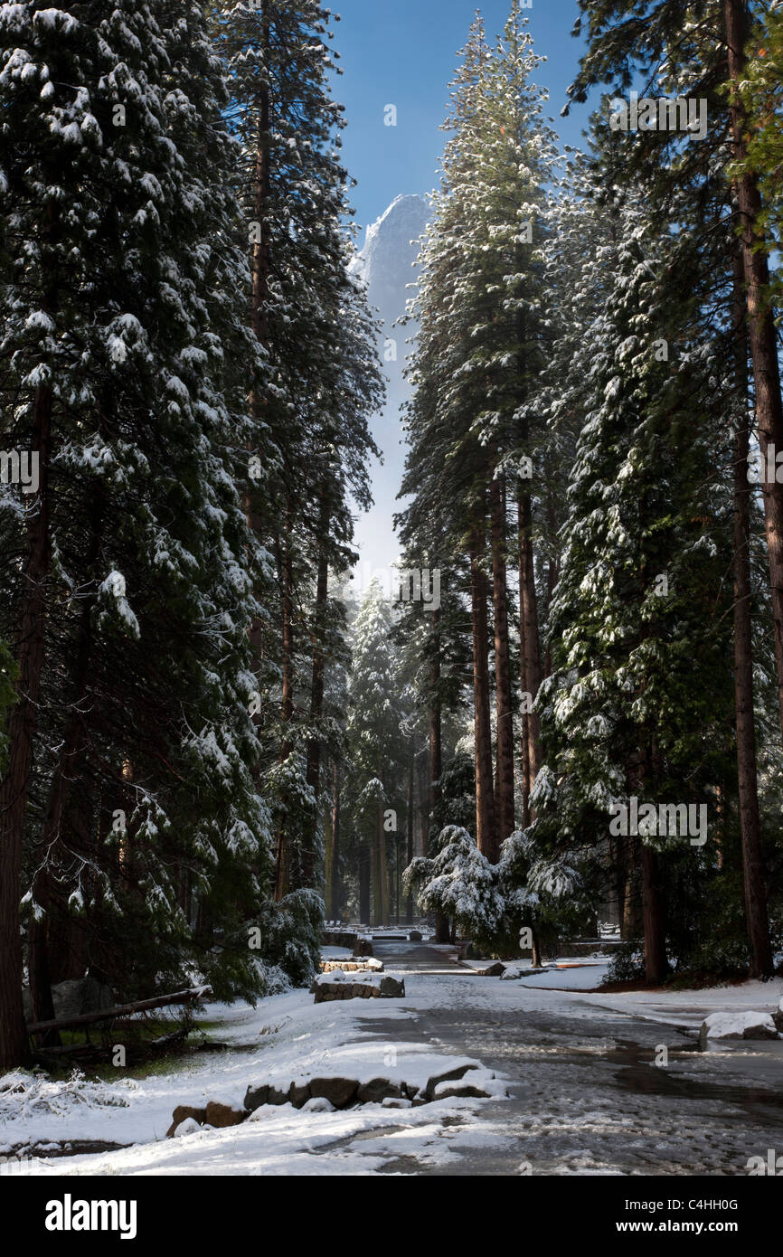 Beautiful landscapes scenic panorama path leading through Yosemite National Park after spring snowfall, snow on - Stock Image