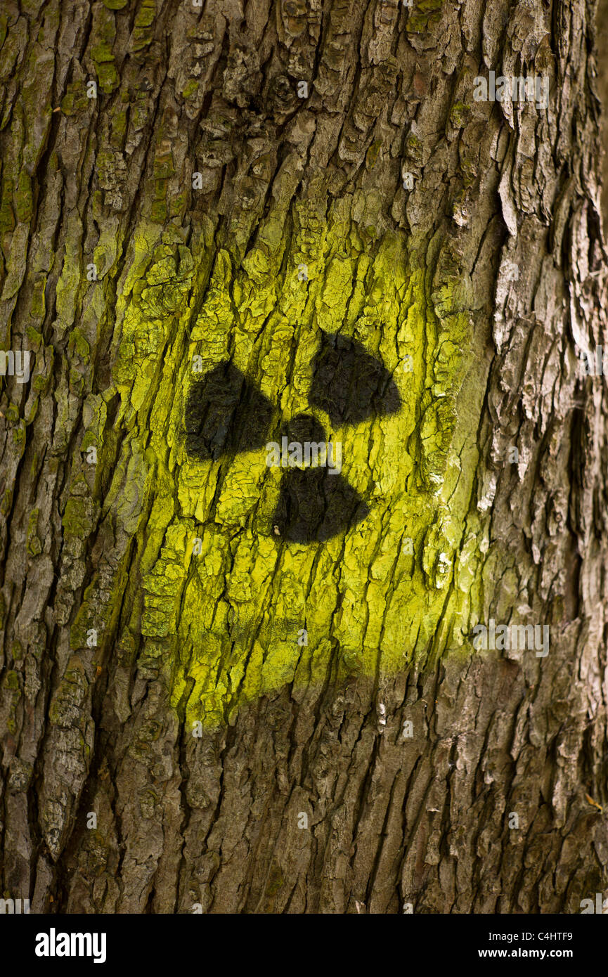 Graffito / graffiti: Black and yellow radiation symbol (trefoil) spayed on on the trunk of a tree in Munich, Germany - Stock Image