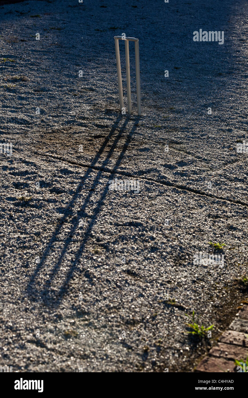 Cricket stumps at the end of a summer day - Stock Image