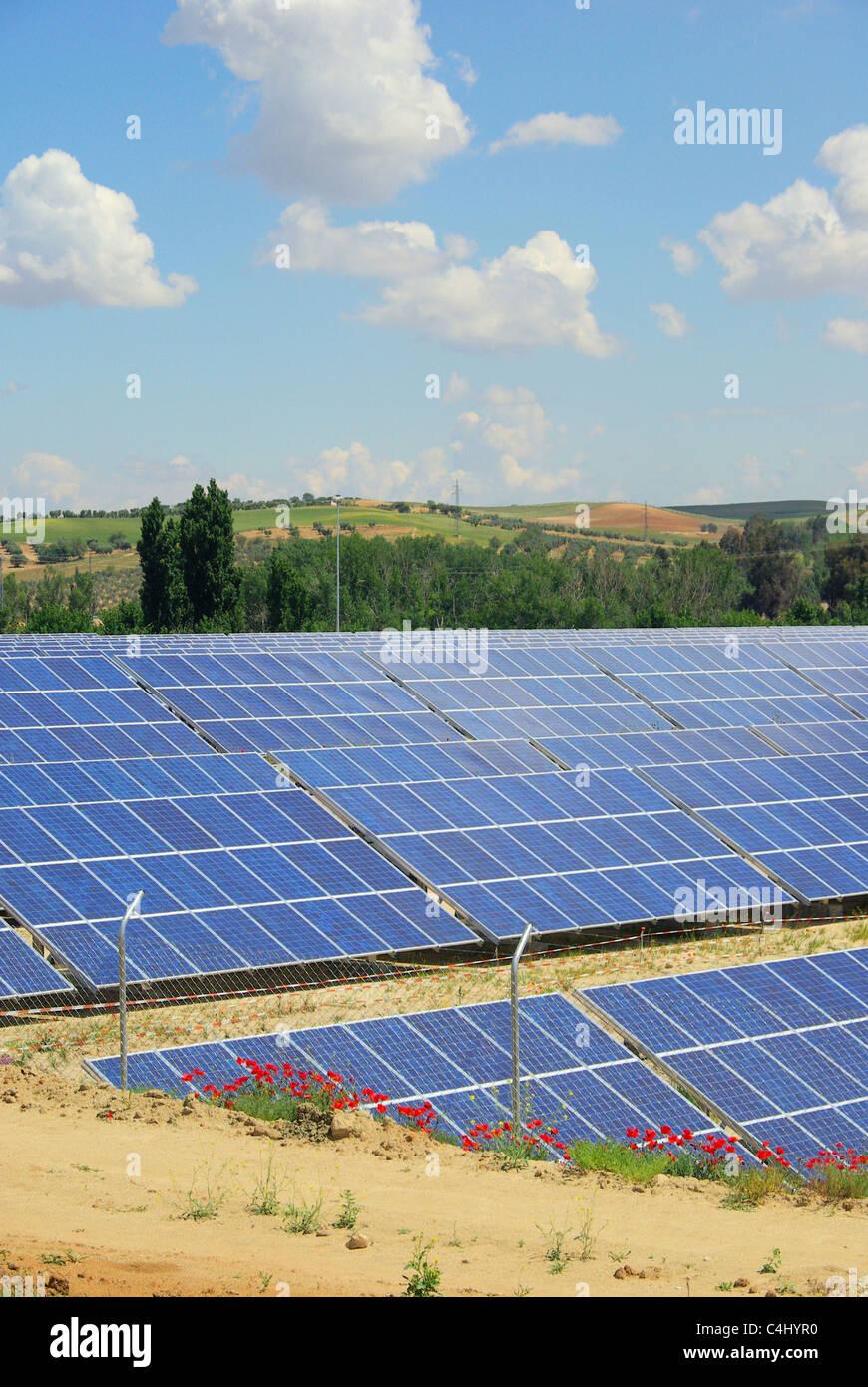 Solaranlage auf Feld - solar plant on field 02 - Stock Image