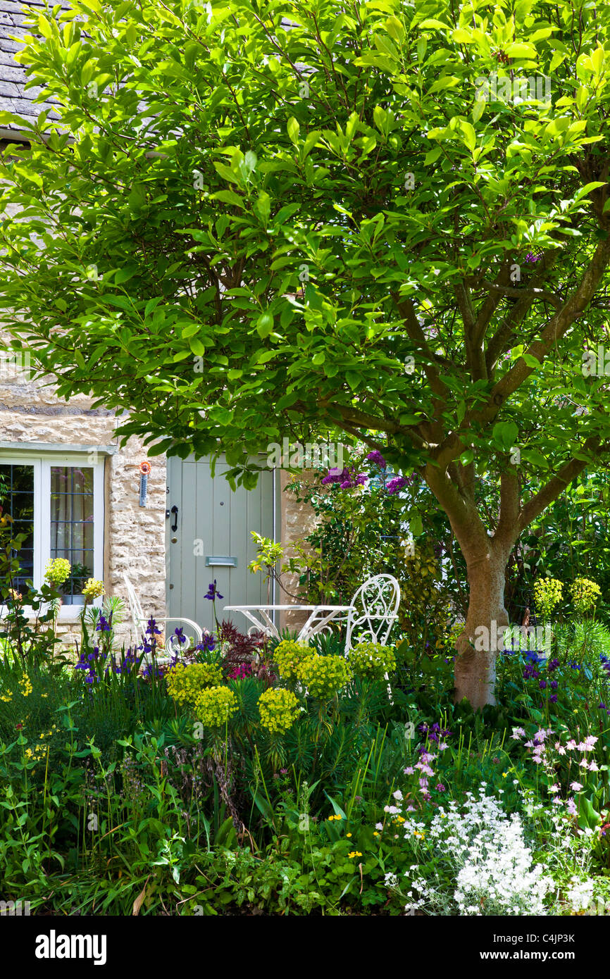 A pretty English country front garden in the Cotswolds in spring or early summer - Stock Image