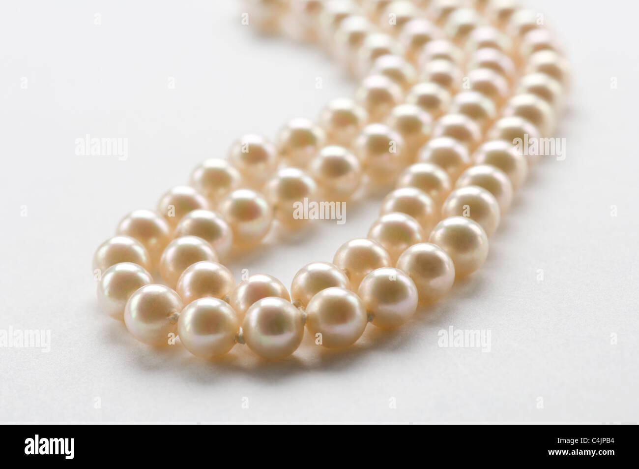 Pearl necklace on white - Stock Image