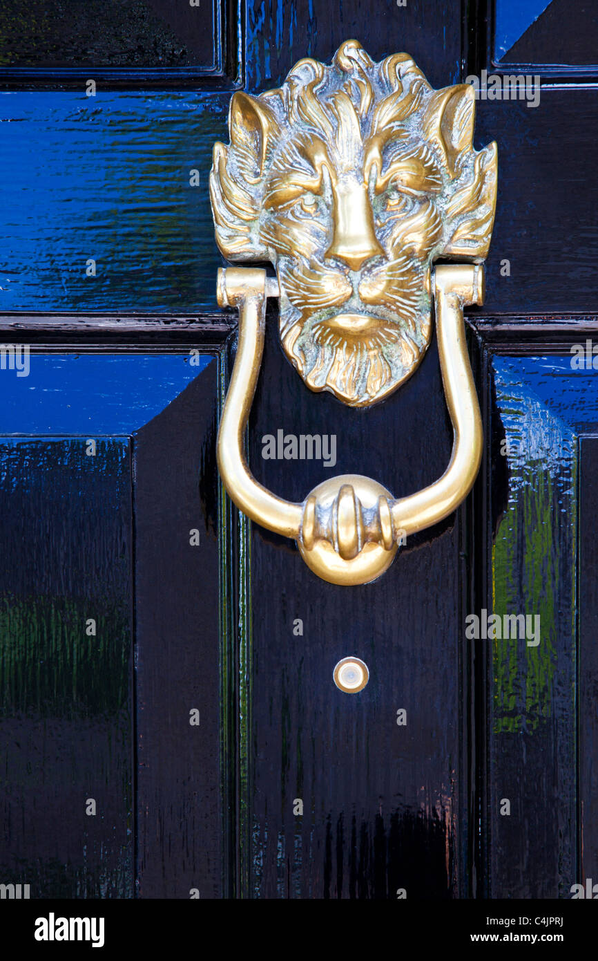 A shiny high gloss black painted front door with highly polished lion head brass door knocker - Stock Image