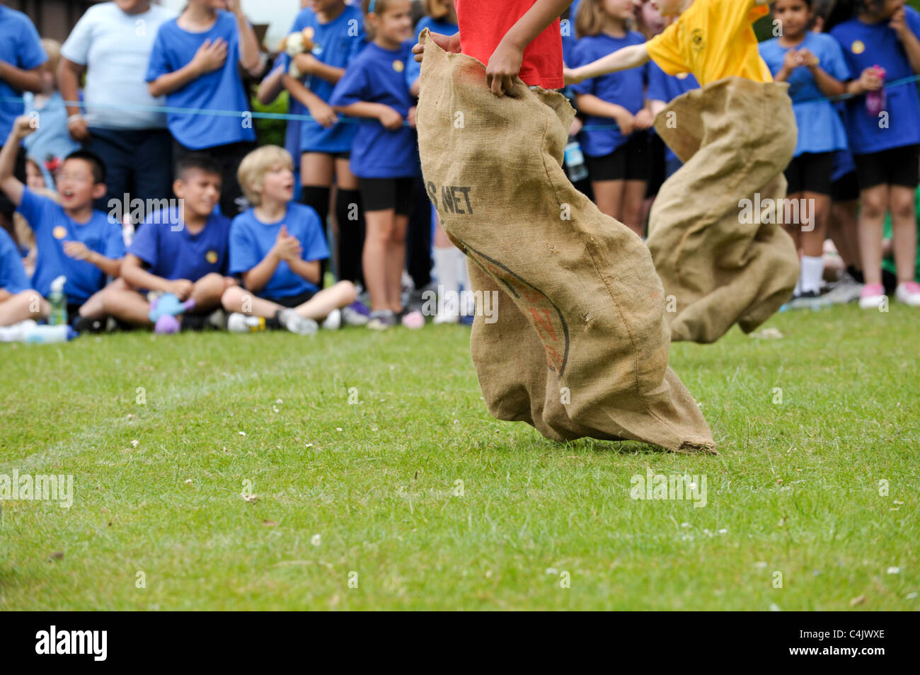 two school children in a traditional sack race at school sports day with pupils cheering them on as they cross the - Stock Image