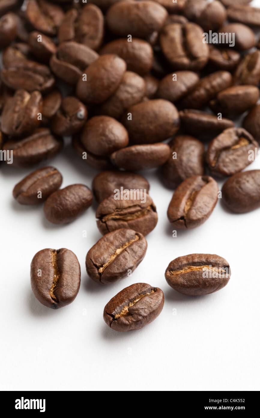 Coffee Bean with white background - Stock Image