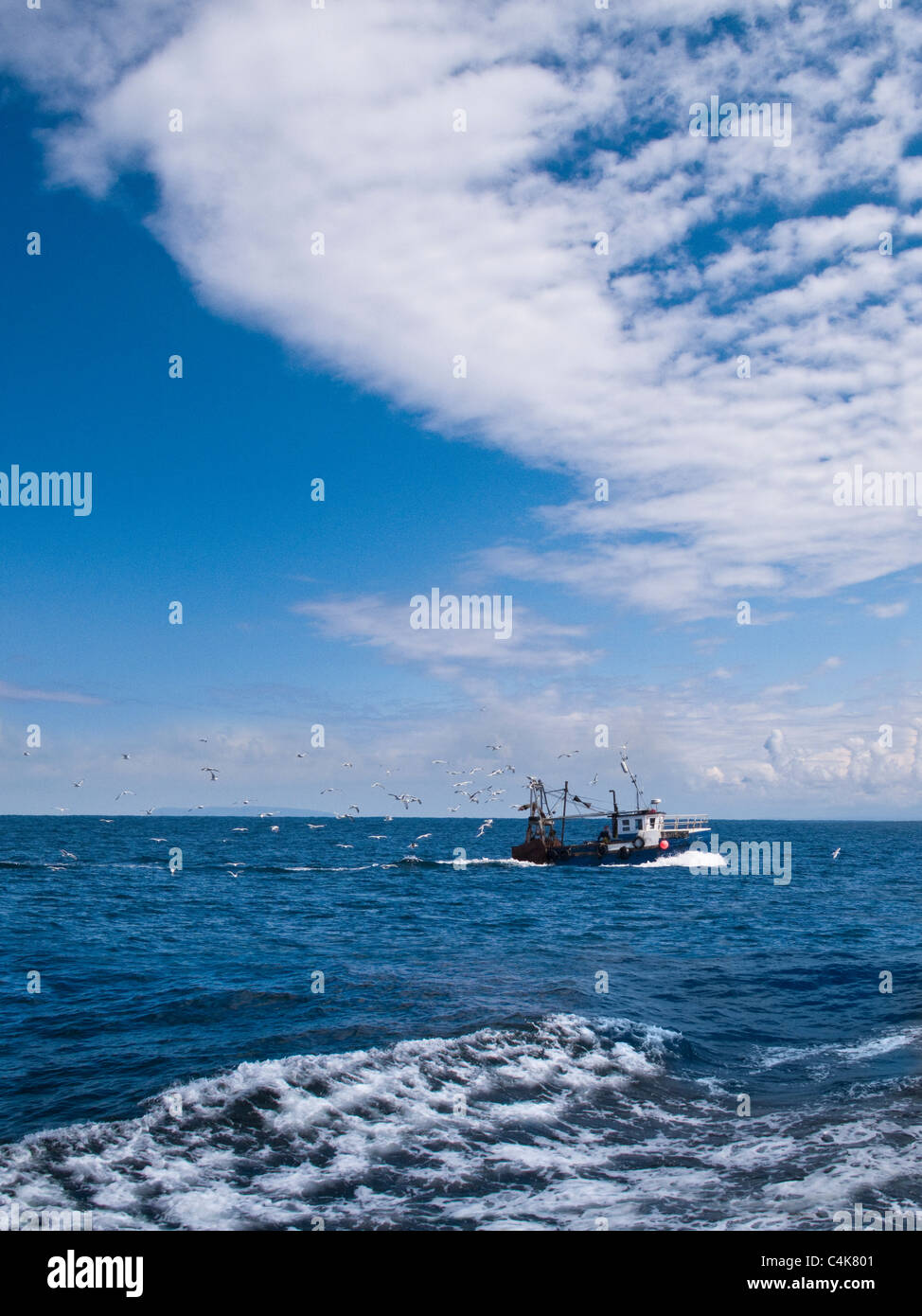 A fishing boat being followed by Sea Gulls off the coast of North Devon, UK - Stock Image
