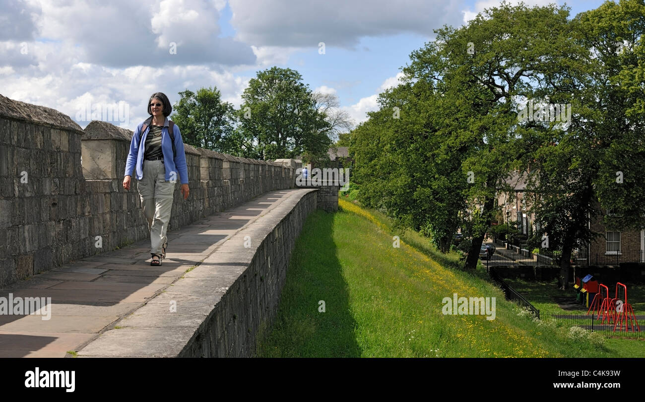 Walking on the City Walls of York , Yorkshire, England - Stock Image
