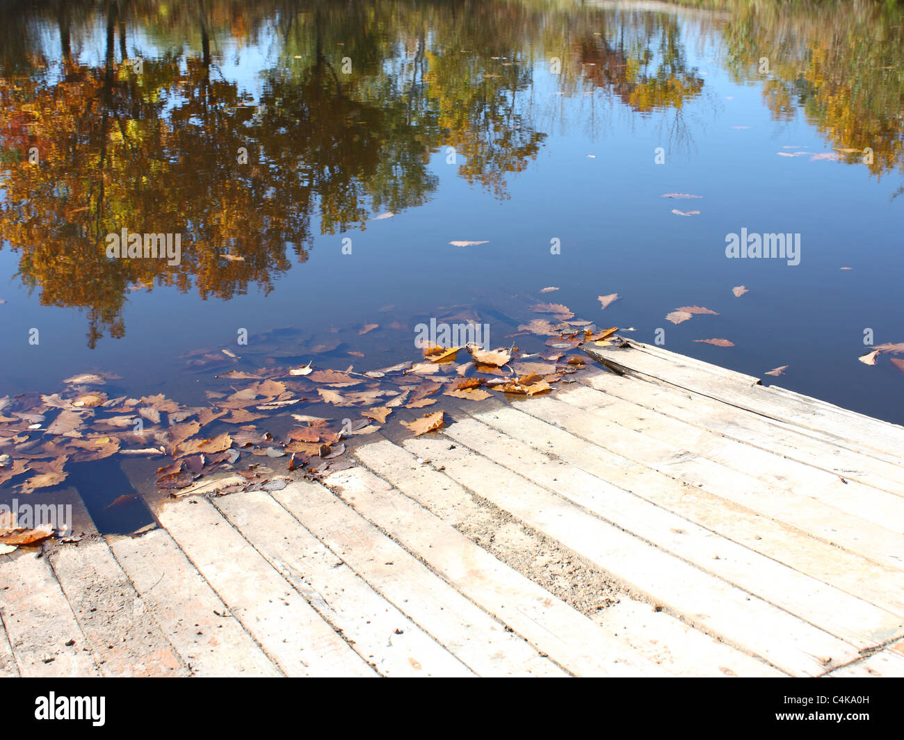 Coast of lake in the mellow autumn with leaves swimming in water. - Stock Image