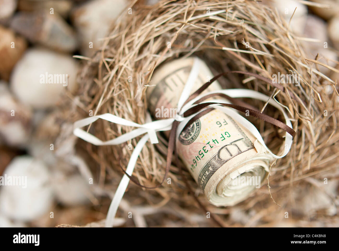 Roll of money in a nest - Stock Image