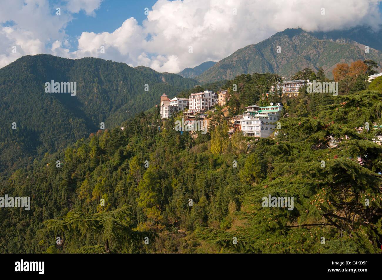 McLeod Ganj, Upper Dharamsala, Himachal Pradesh, India, Asia Stock Photo