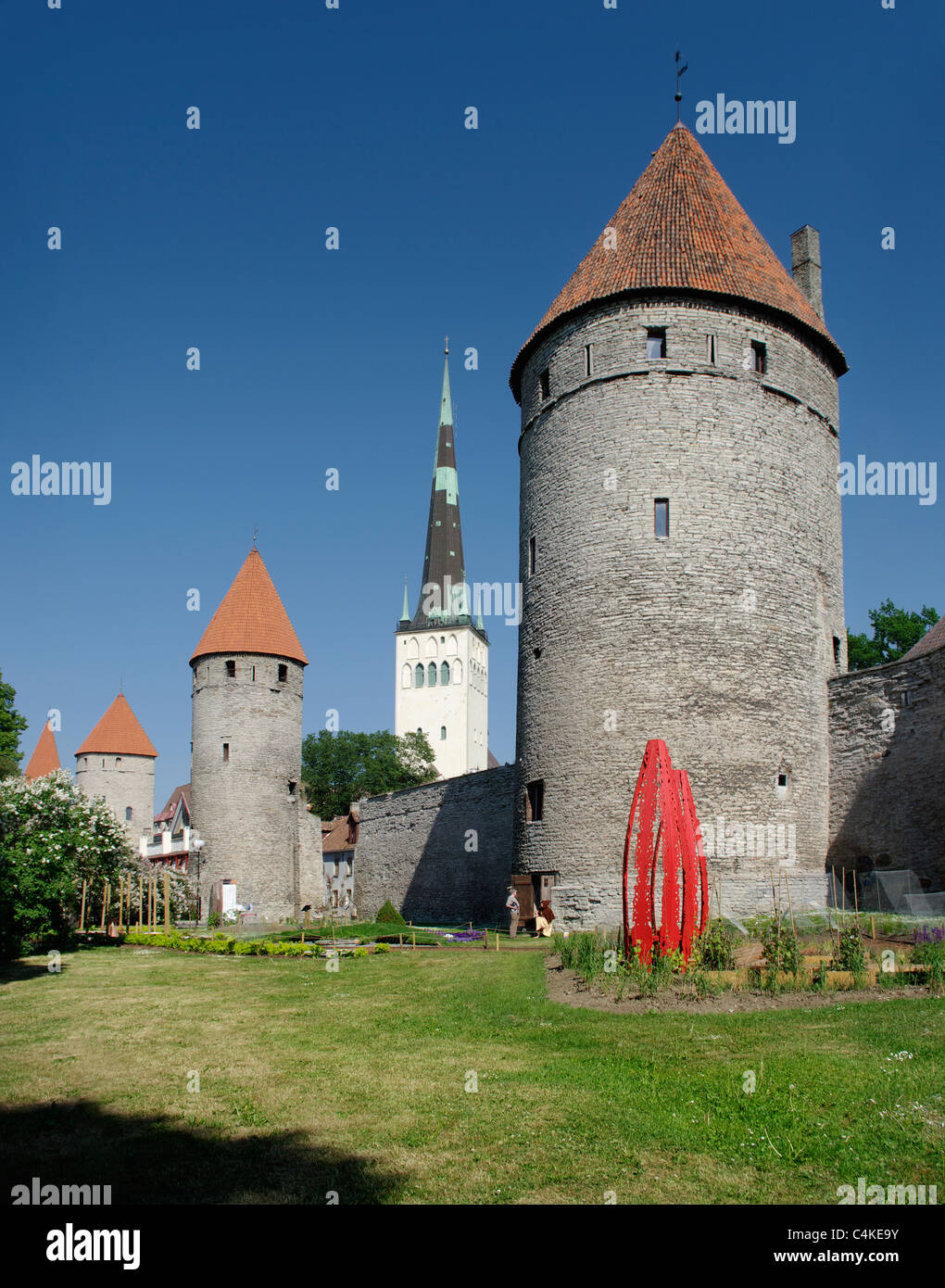 Tallinn City Wall With Towers, Koismäe Torn In Front Of and ST.Olaf`s Church In the Background - Stock Image