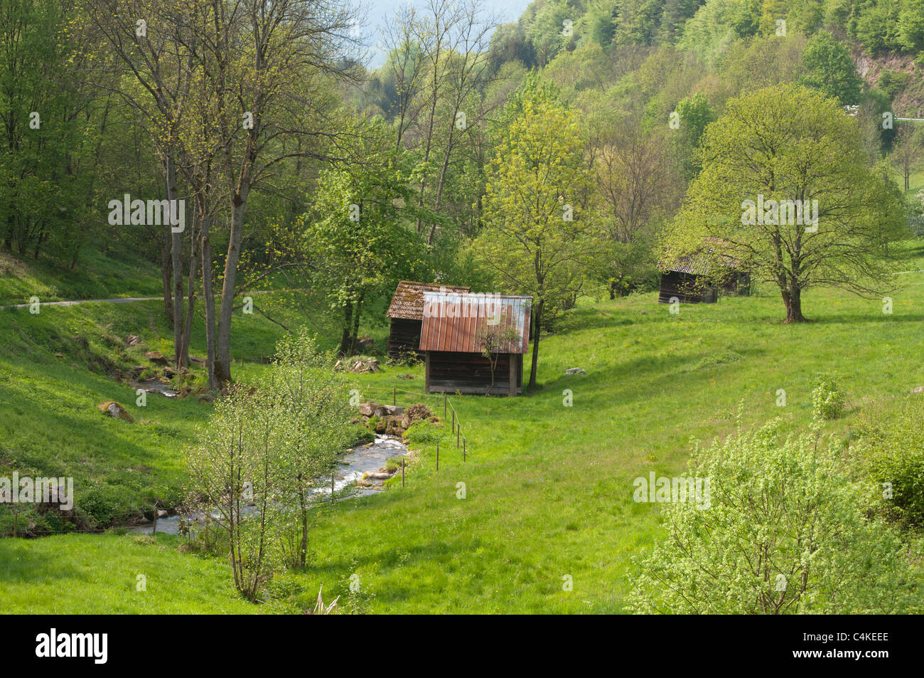 A typical hay hut valley in the Black Forest, Baden-Wuerttemberg, Germany, Europe - Stock Image