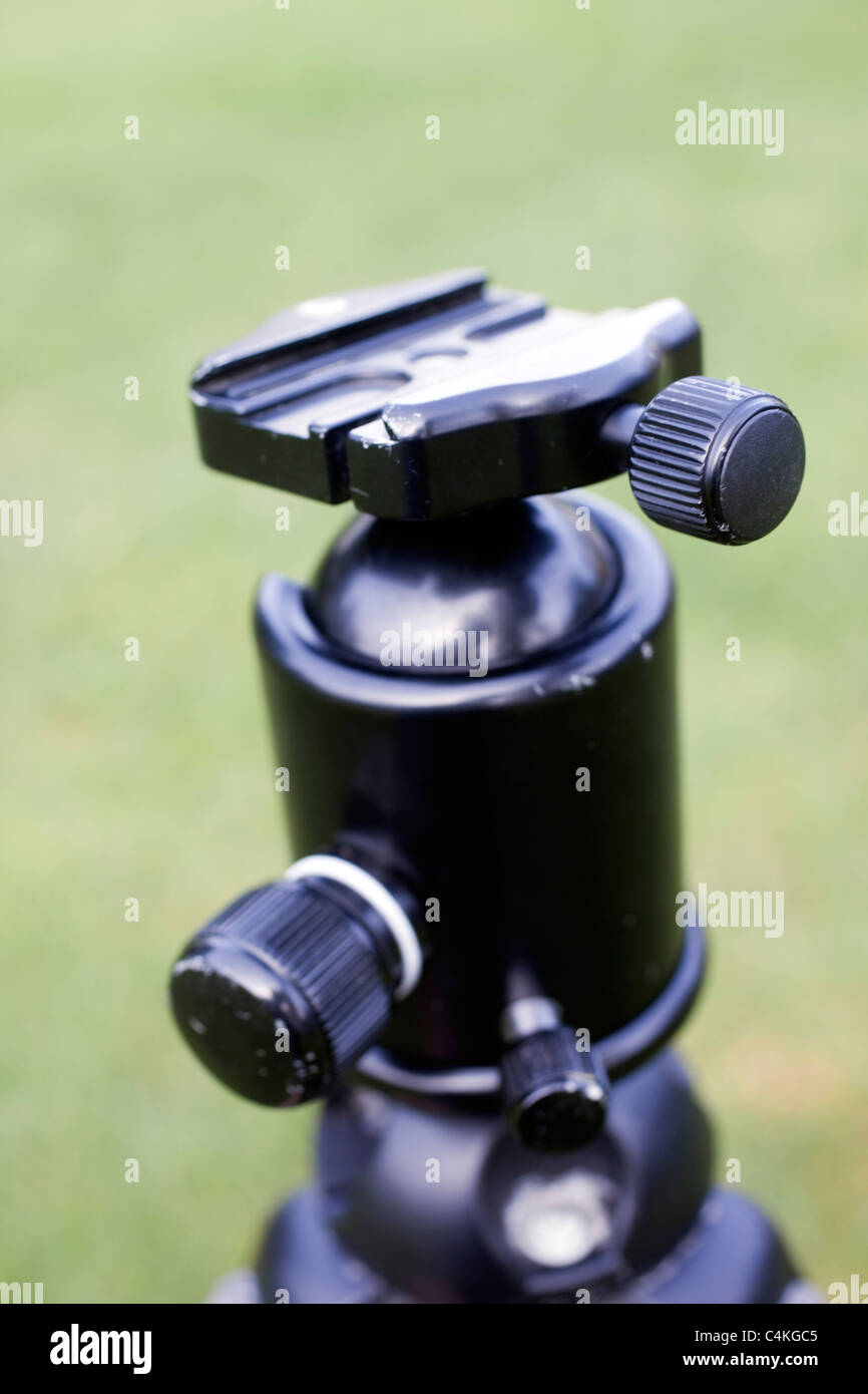 Tripod ball and socket head with quick release plate - Stock Image