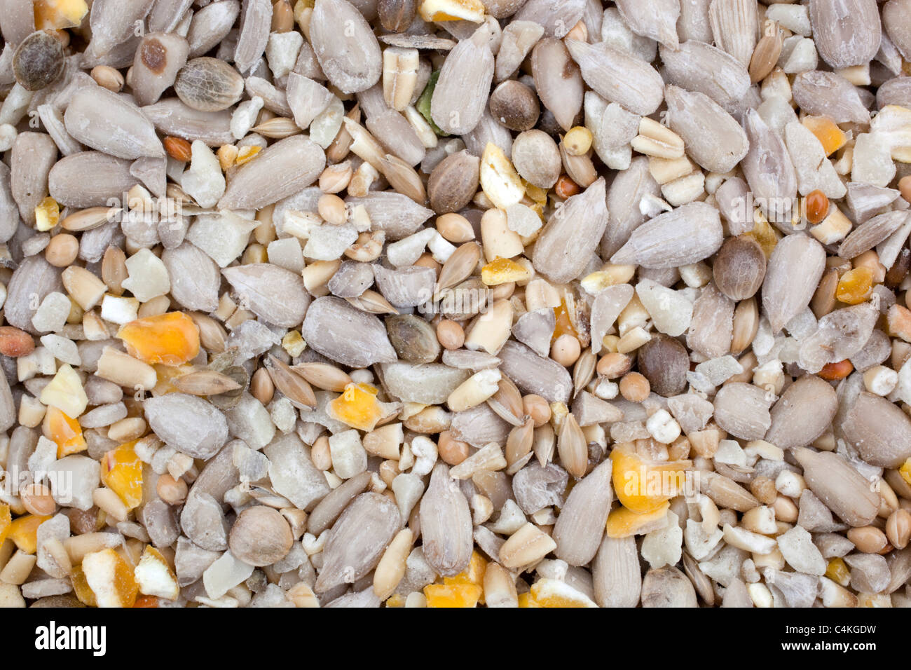 Bird seed mix; sunflower; corn etc; - Stock Image