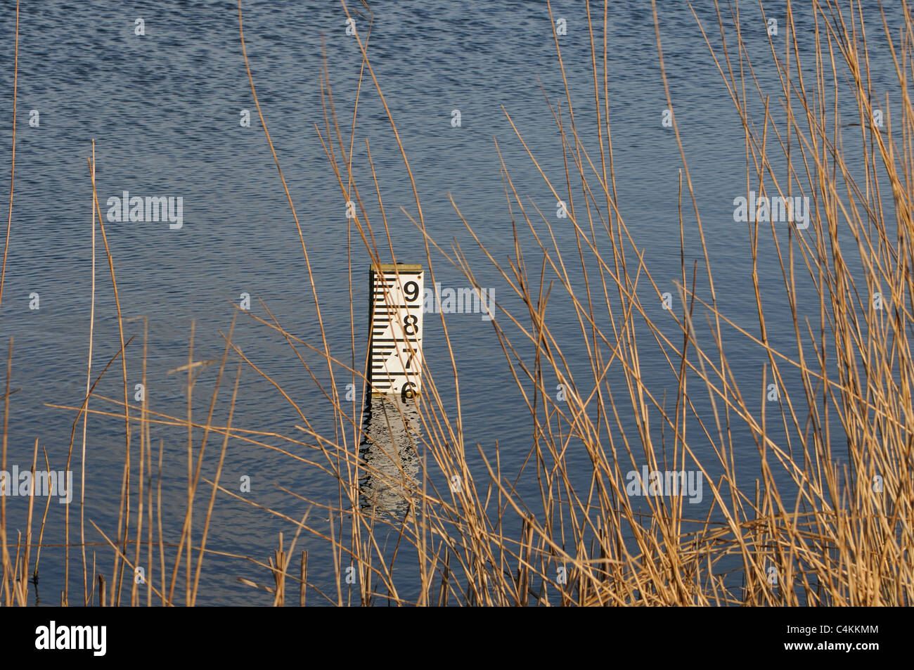 A stake with a scale measuring the depth of a lake. - Stock Image