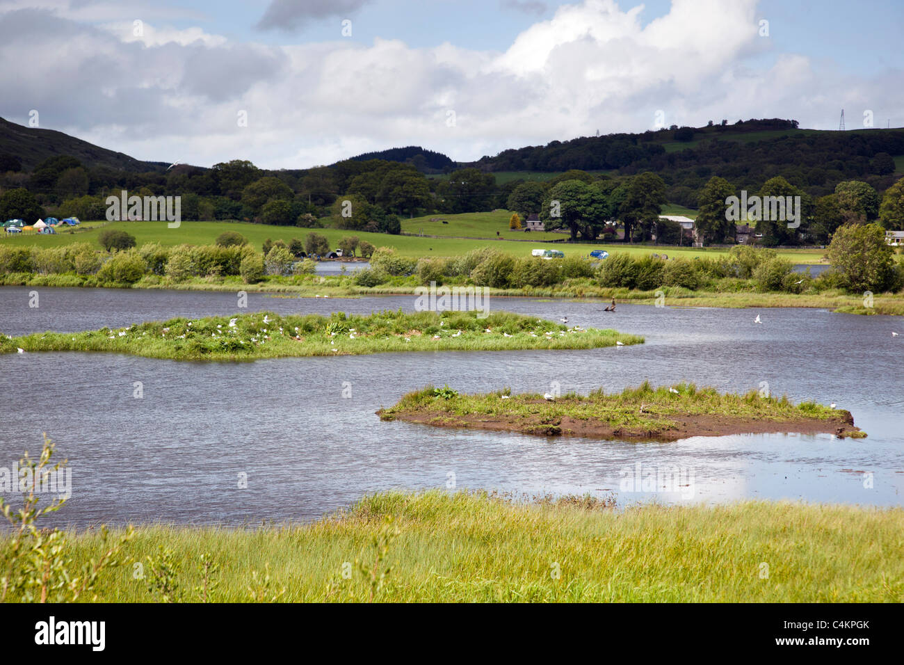 Ken Dee RSPB Reserve; Dumfries and Galloway; Scotland - Stock Image