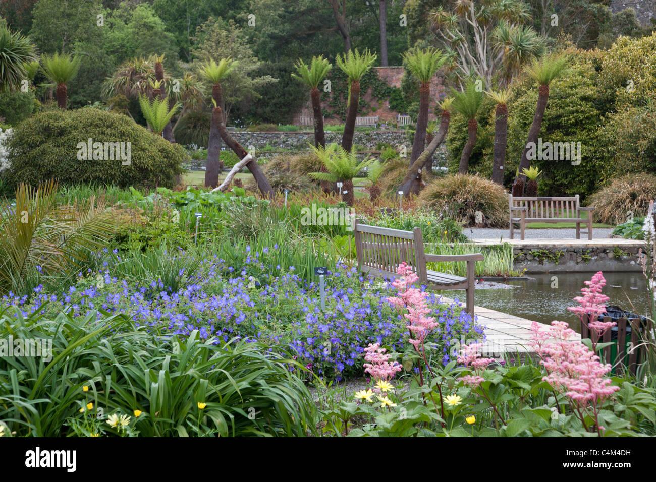 Logan Botanical Garden; Dumfries and Galloway; Scotland - Stock Image
