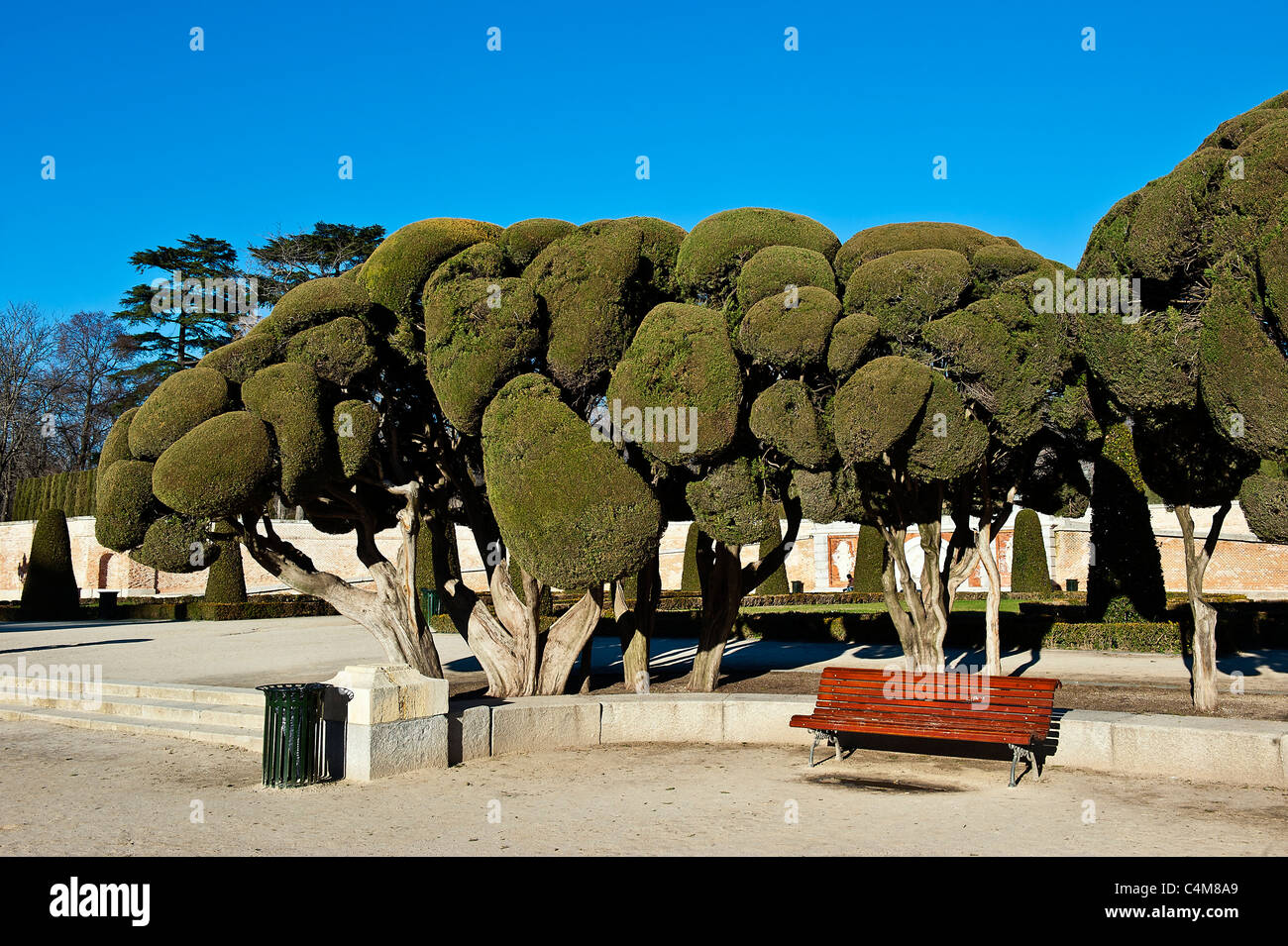 Sculpted trees, Retiro Park, Madrid, Spain - Stock Image