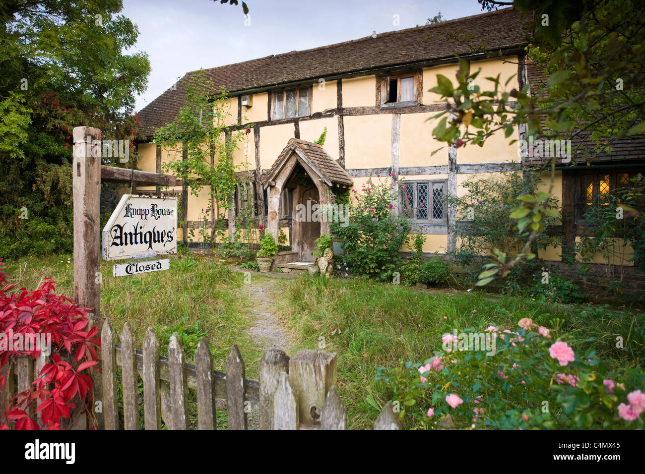 Quaint Tudor style half-timbered cottage now Knapp House antiques shop at Eardisland, Herefordshire, UK - Stock Image