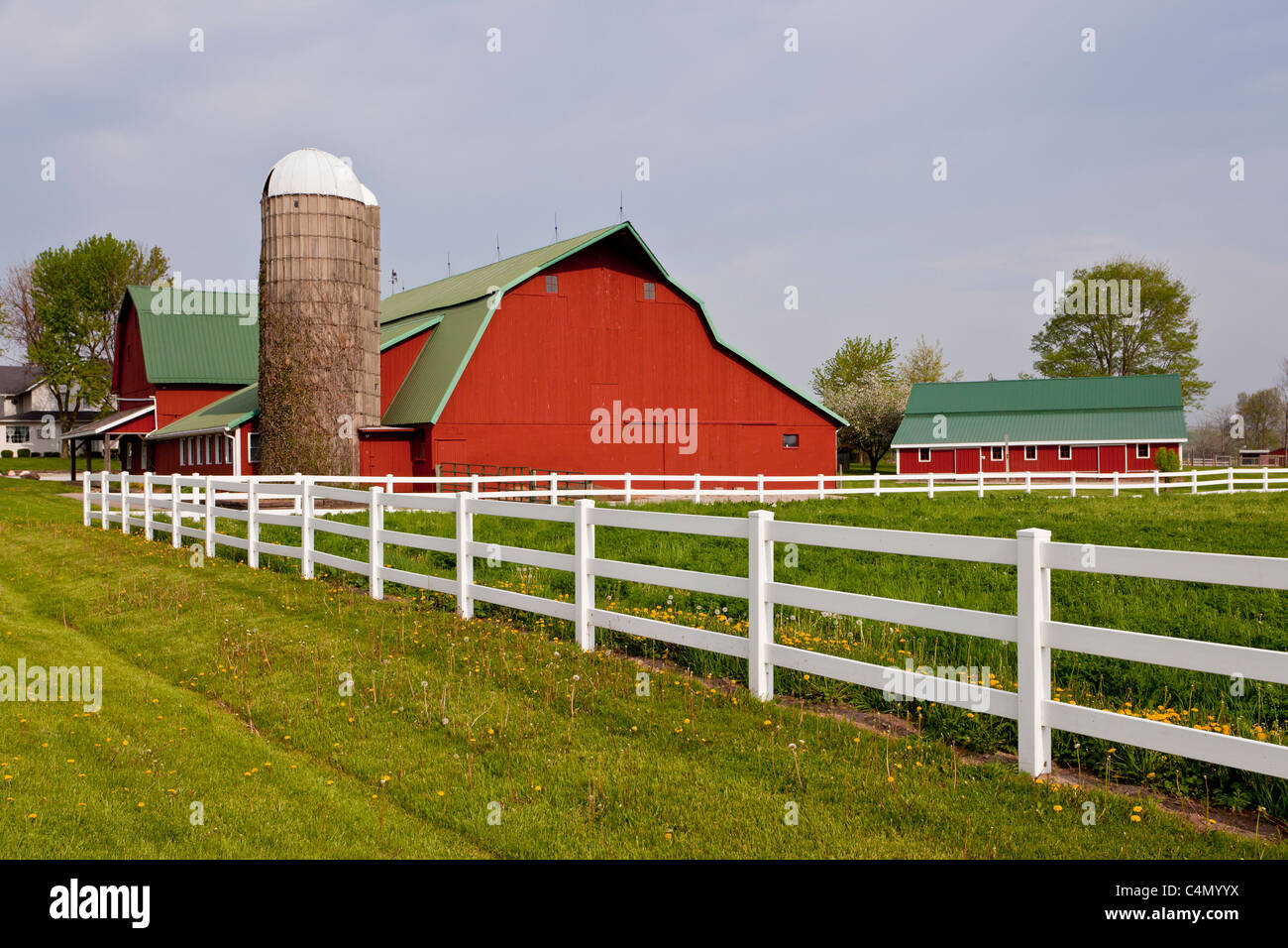 A red dairy barn with white fence in Middlebury, Indiana, USA. - Stock Image