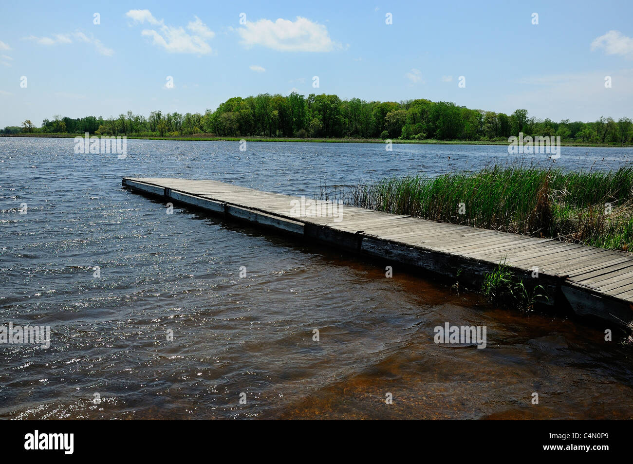 Dock jutting out into a glacial bog lake at Moraine Hills State Park in McHenry, Illinois, USA. Lake is called Lake - Stock Image