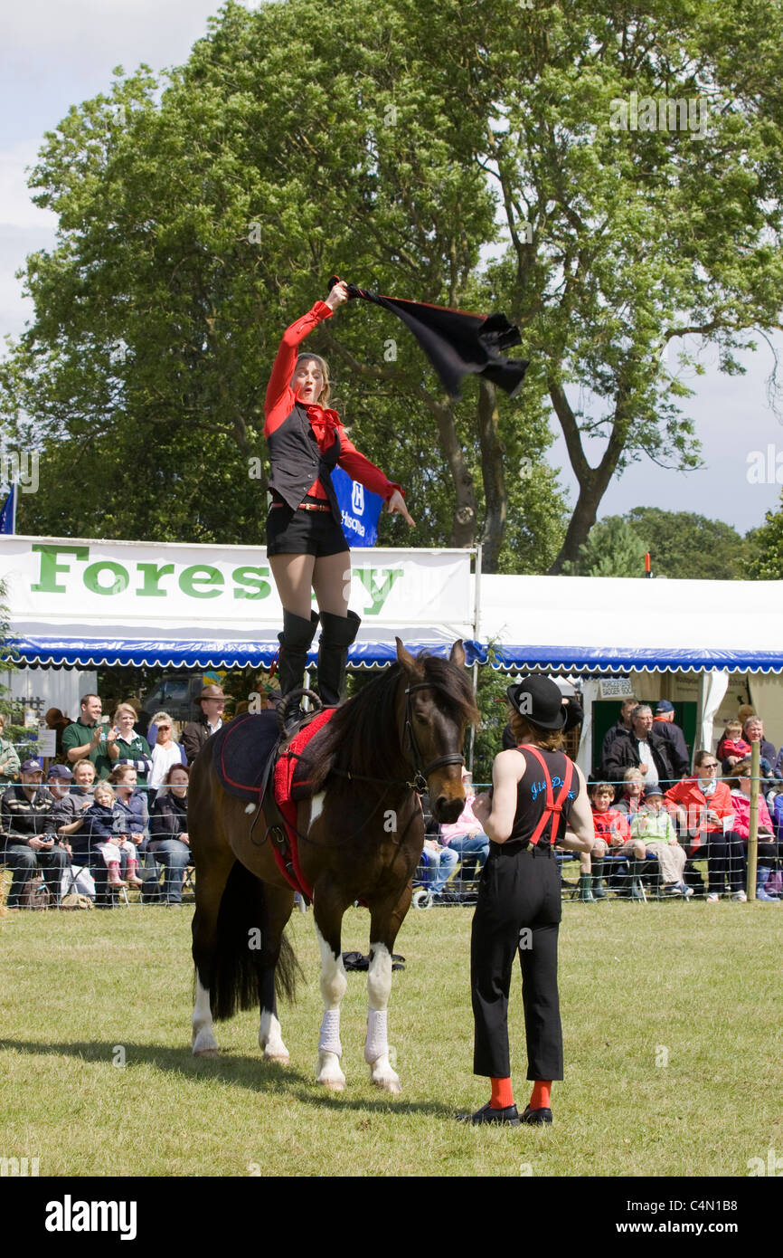 Jive Pony a highly trained free working vaulting horse and rider - Stock Image