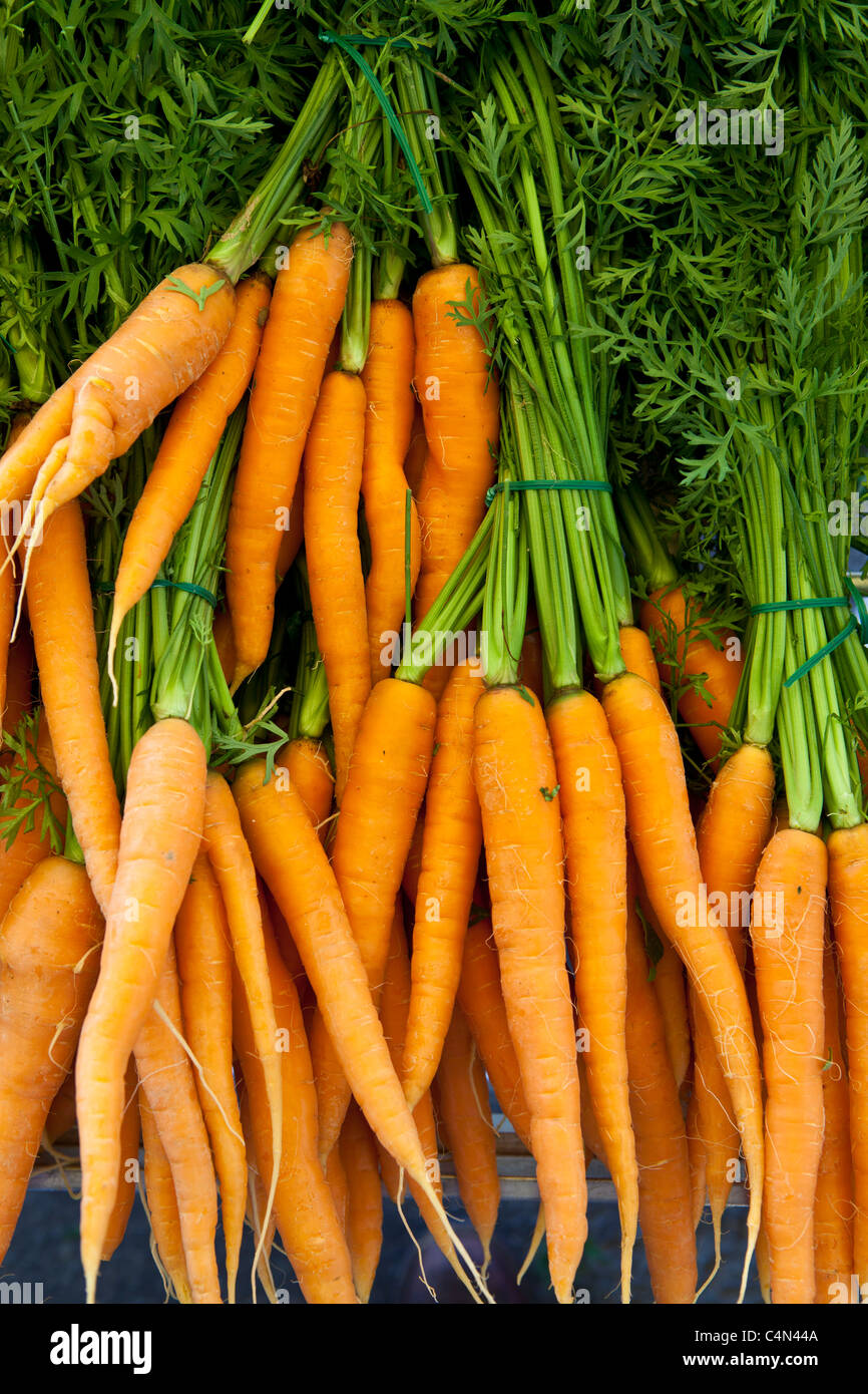 Freshly-picked carrots on sale at food market at La Reole in Bordeaux region of France - Stock Image