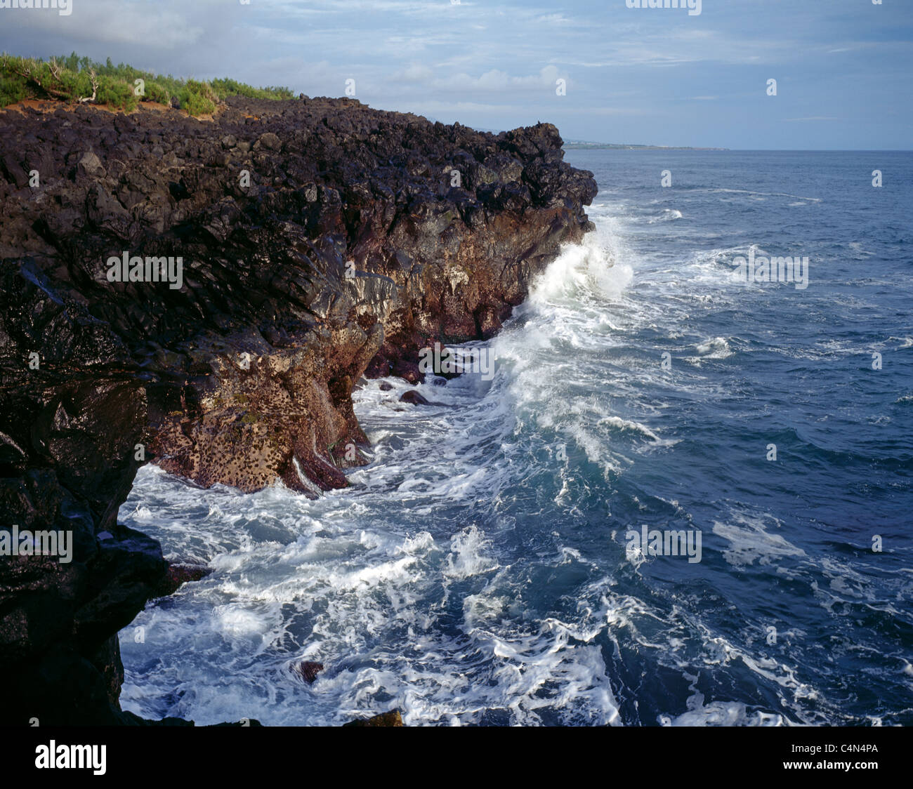 untamed waves of the Indian Ocean are breaking at the lava coast of the island La Reunion - Stock Image